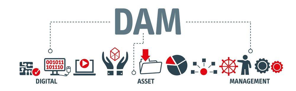 Digital Asset Management Software (DAM) 2021: Ultimate Guide